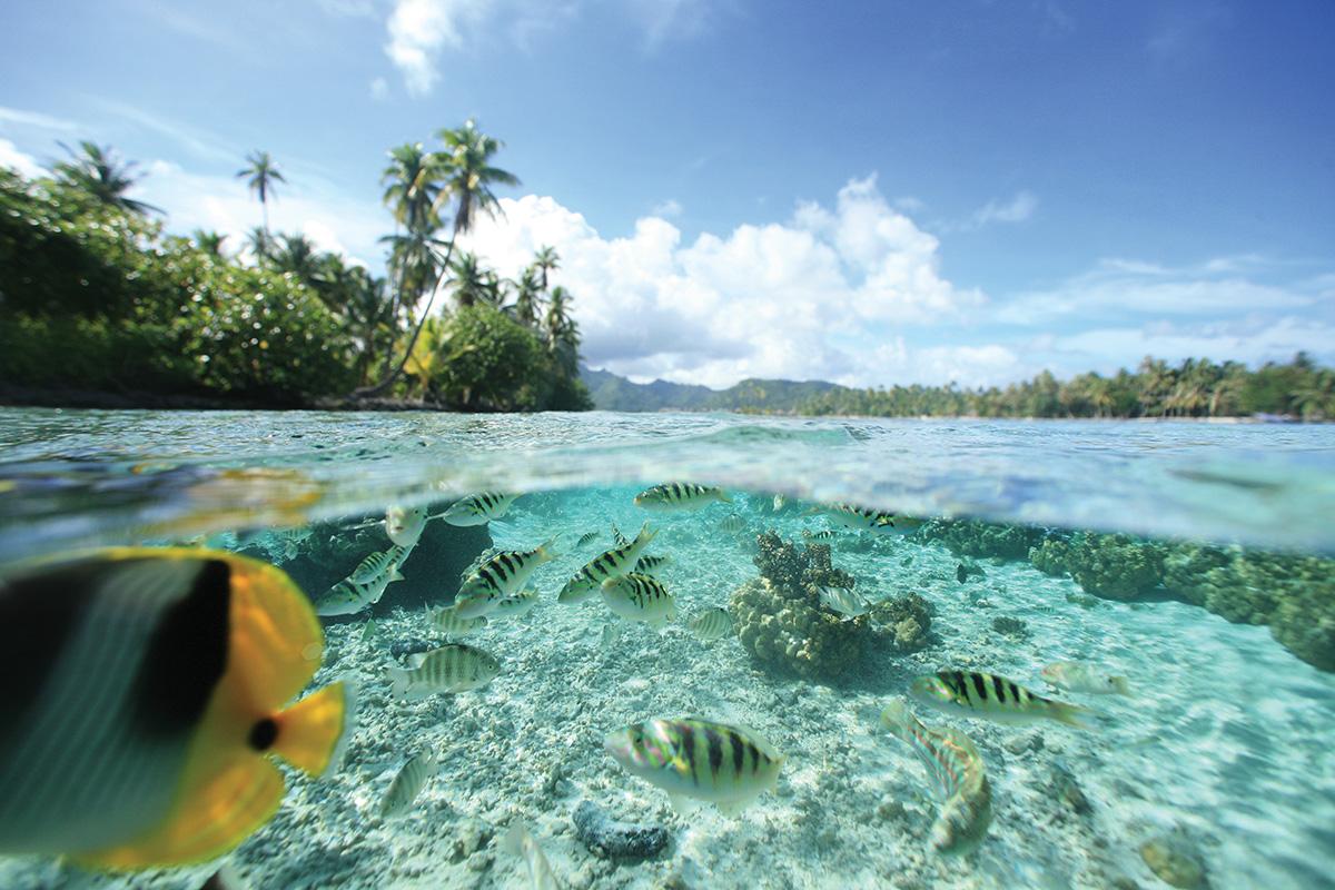 Tahiti_Yacht_Charter_39